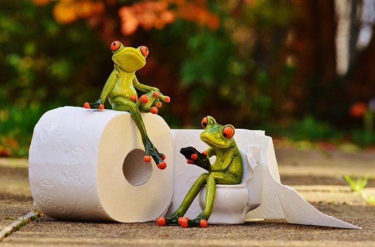 frog-tp